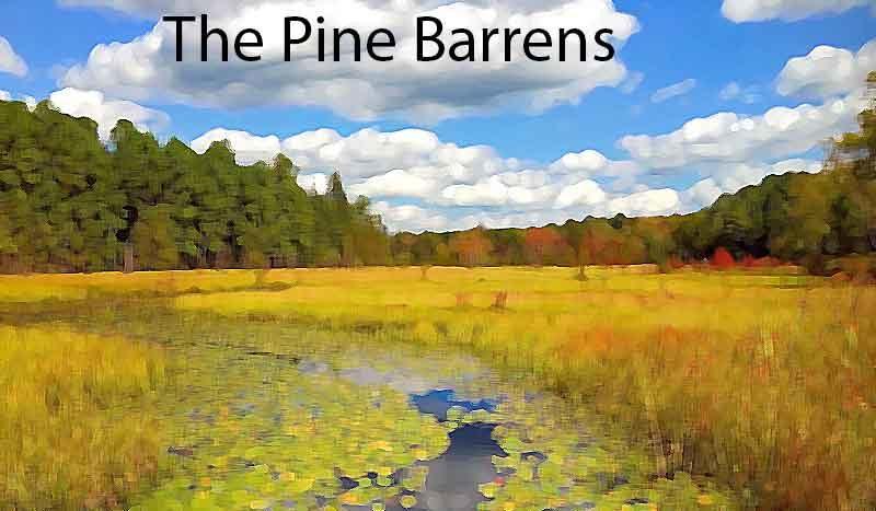 God Dwells in Barren Places