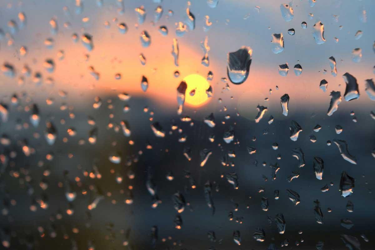 Refreshing Spring Rain
