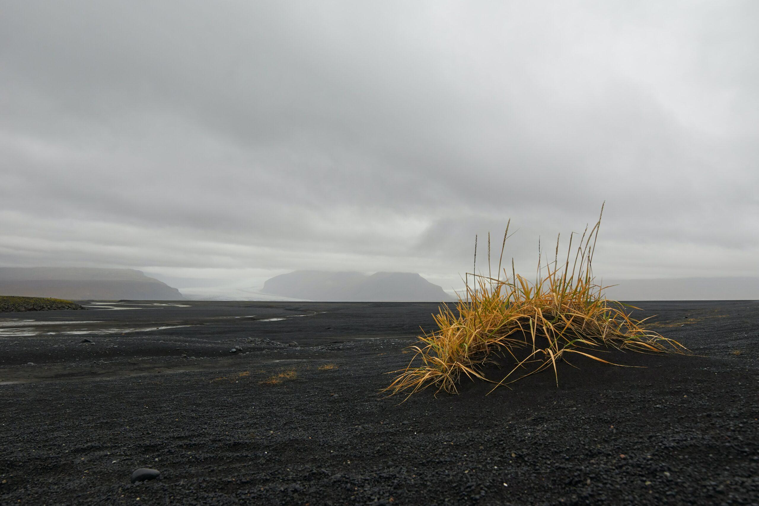 Barren land, barren hearts, barren times